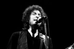 Bob Dylan at the Warfield