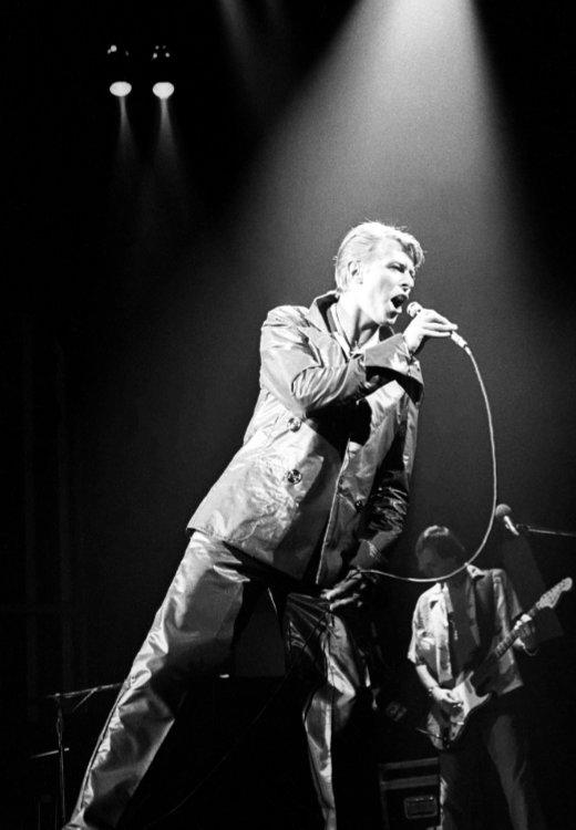 David Bowie Hulst-01